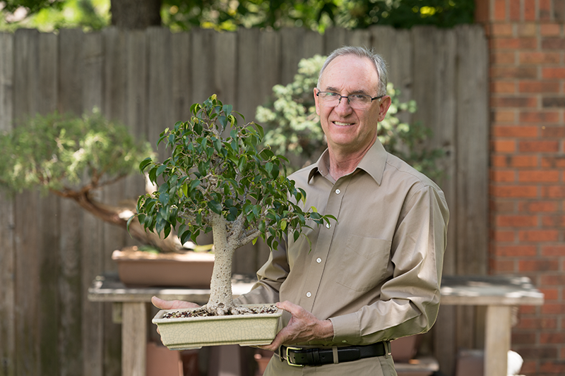 darrell whitley and his bonsai trees