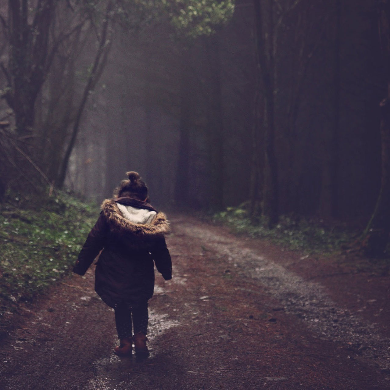lone child in woods