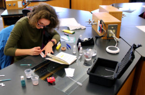 Student Chloe Beardsley works on creating a paper analytical device.