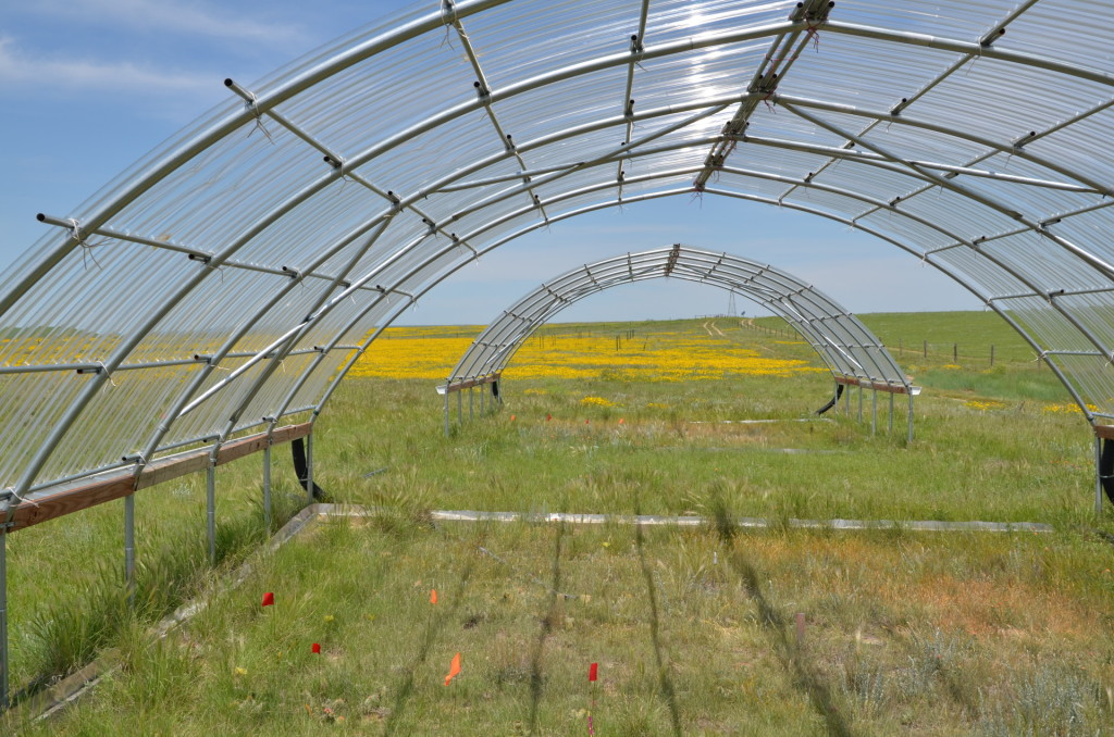 Solving a mystery from the Dust Bowl to help plan for climate change - College of Natural Sciences 1