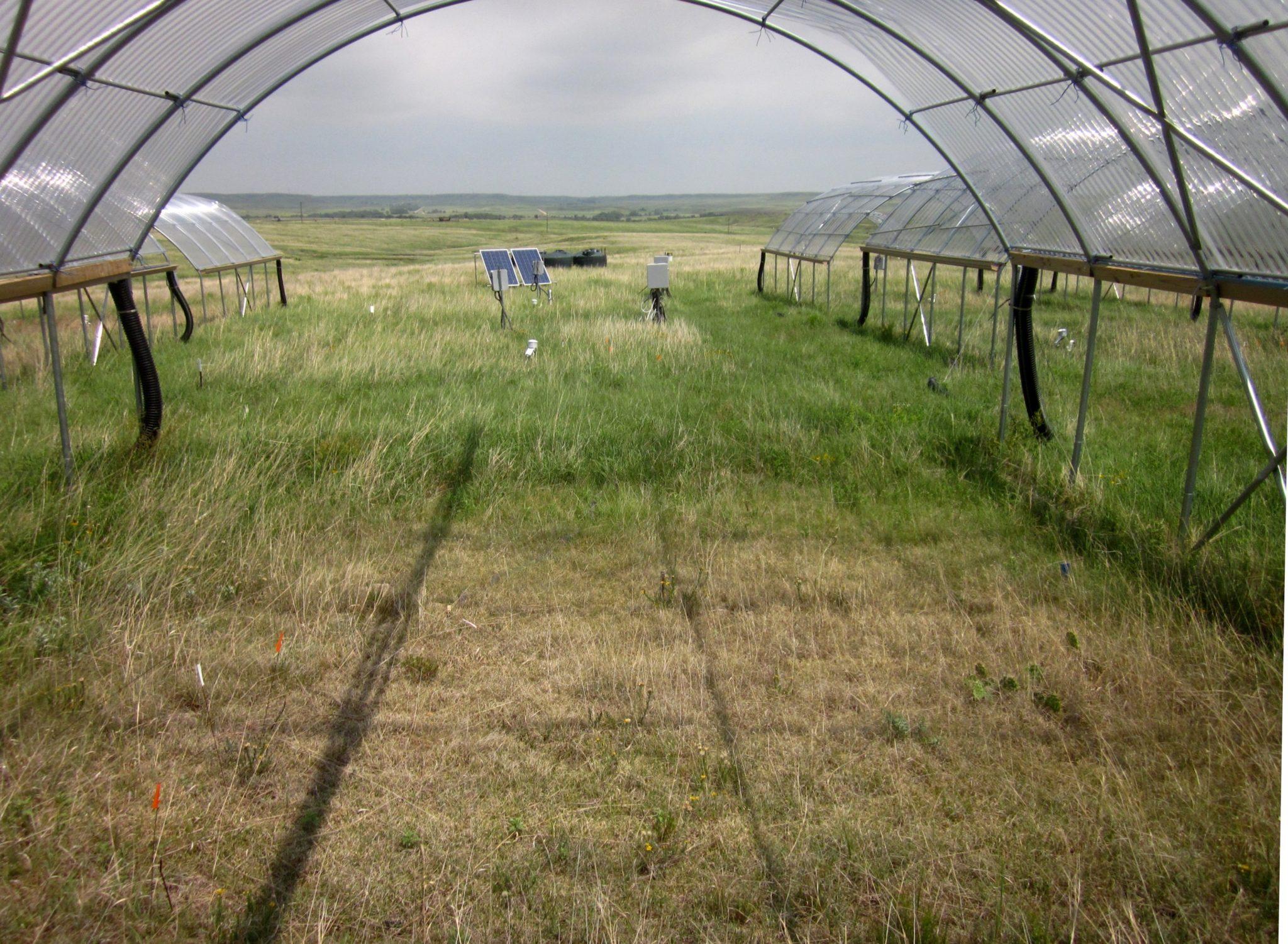 Drought shelter near Hays, Kansas