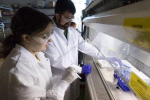 Andy Koppisch with another researcher using a lab hood to investigate chemicals