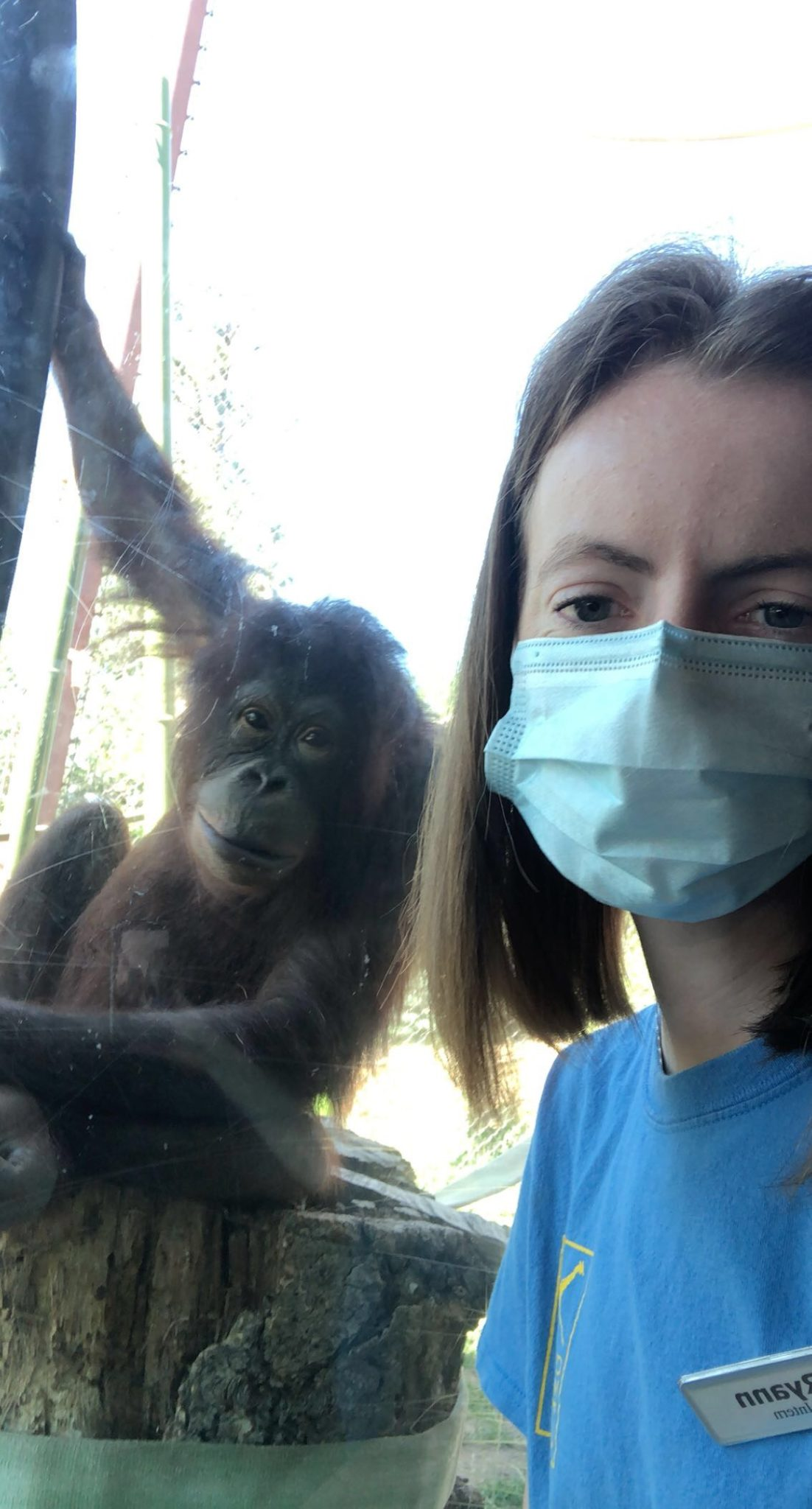 Gregory with an orangutan at Cheyenne Mountain Zoo this summer.