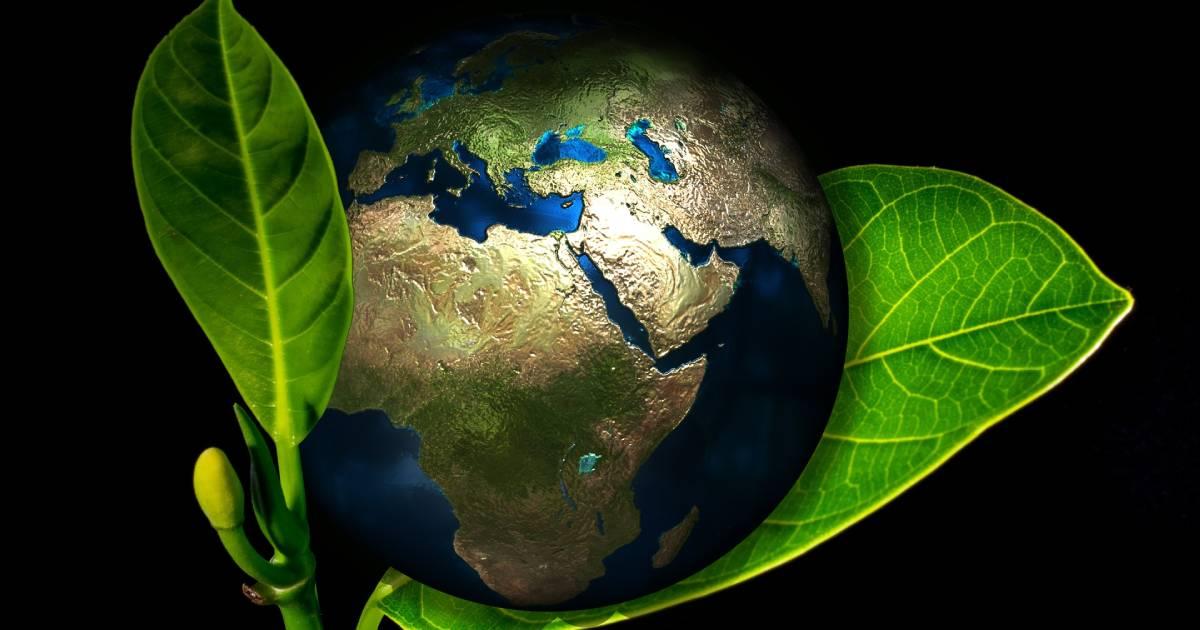 earth enveloped in green leaves